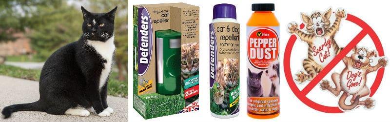 Best 5 Ways To Stop Cats Pooping In Your Garden