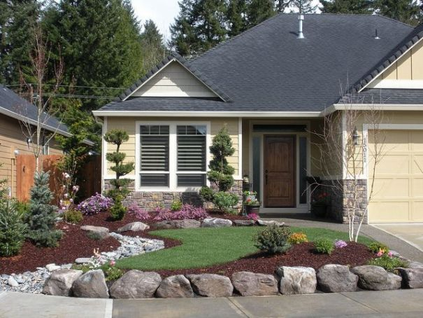 Mulched borders and low maintenance plants