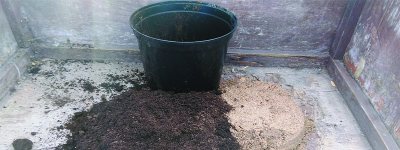 mix compost and sand 50/50 to improve drainage
