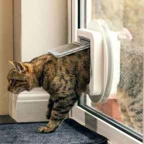 BEST MICROCHIP CAT FLAP - Sureflap microchip cat flap review