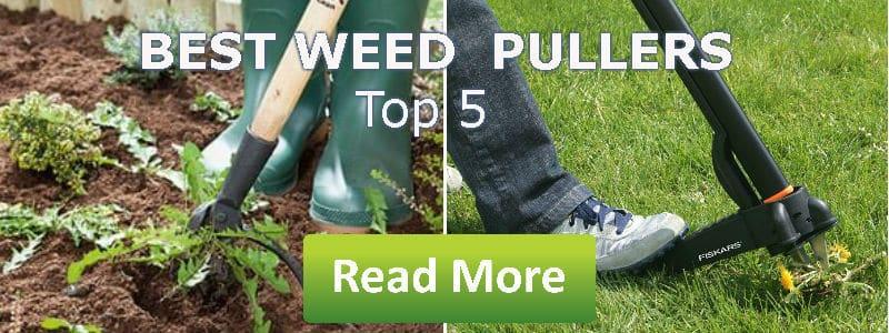 best weed pullers