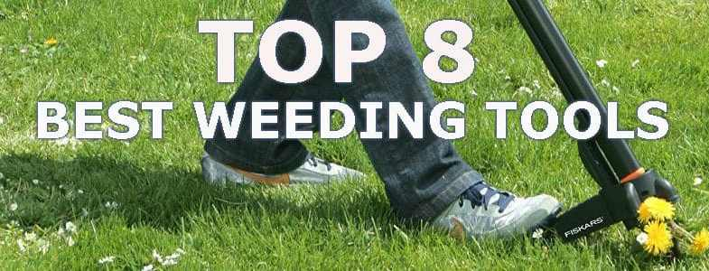 Top 8 best weeding tools
