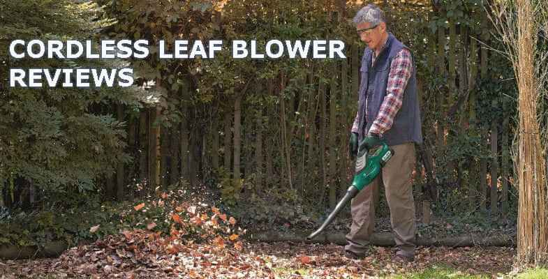 5 Best Cordless Leaf Blowers – Test & Reviewed 2018