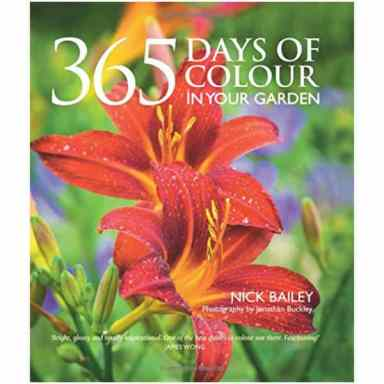 365 days of colour book