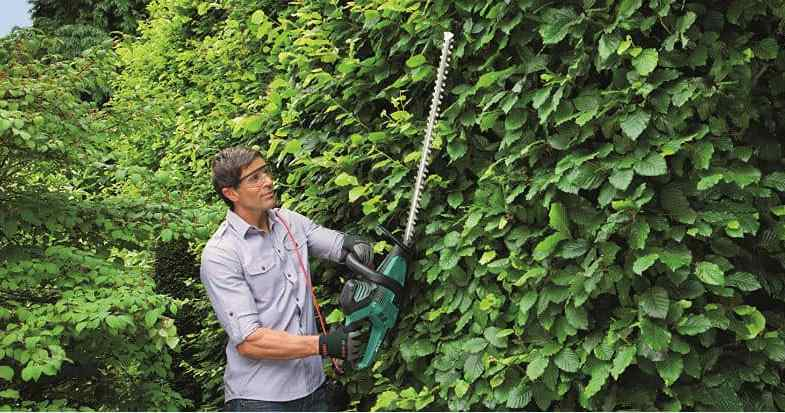The Best Hedge Trimmer – Top 6 Compared & Detailed Reviews