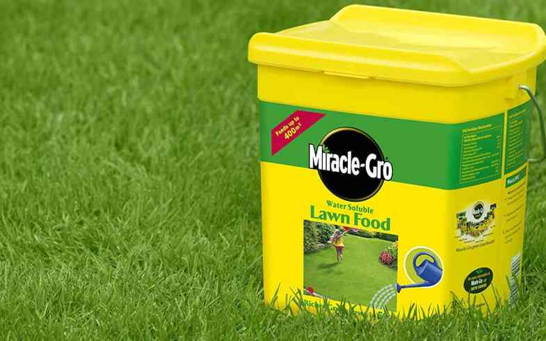 Best Lawn Feed - Top 6 fertilisers for applying dry and in water