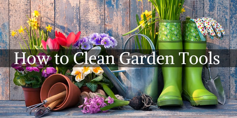 How To Clean Garden Tools Correctly U2013 Step By Step Guide