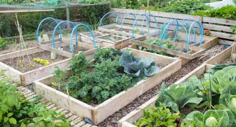 How to make raised beds the easy way - 3 Step by step guides