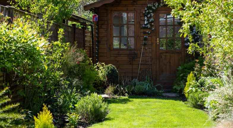 Top 10 Shrubs For Small Gardens