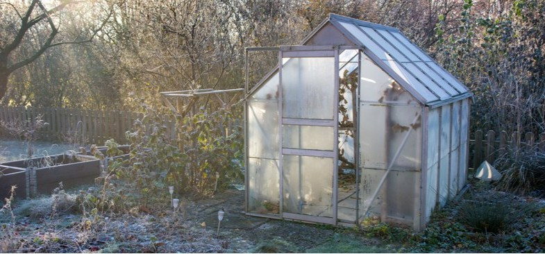 How to insulate a greenhouse with bubble wrap – Step by Step