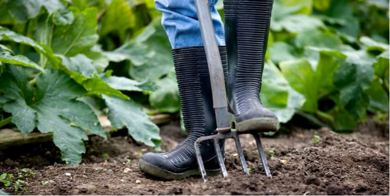 Top 6 Best Wellies For Gardening