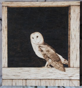barn owl wood burning pyrography bmj