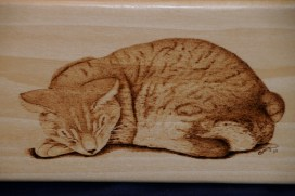 cat wood burning pyrography bmj