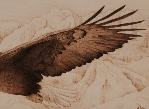 Wing Close Up