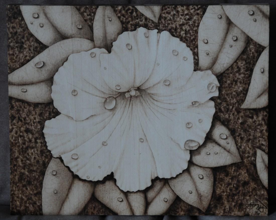 petunia flower water drop wood burning pyrography bmj