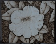petunia flower water drop wood burning pyrography bmj