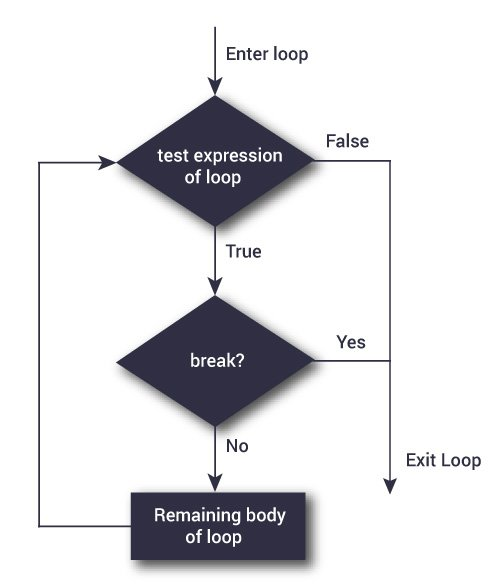 python break flowchart