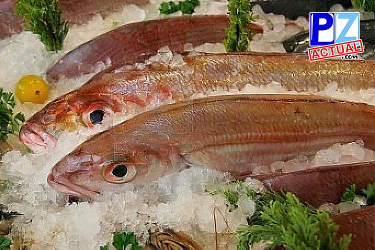 Consejos útiles a la hora de comprar pescado para esta Semana Santa.
