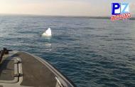Naufragio de una embarcación en el Pacífico Sur dejó una persona fallecida este domingo.