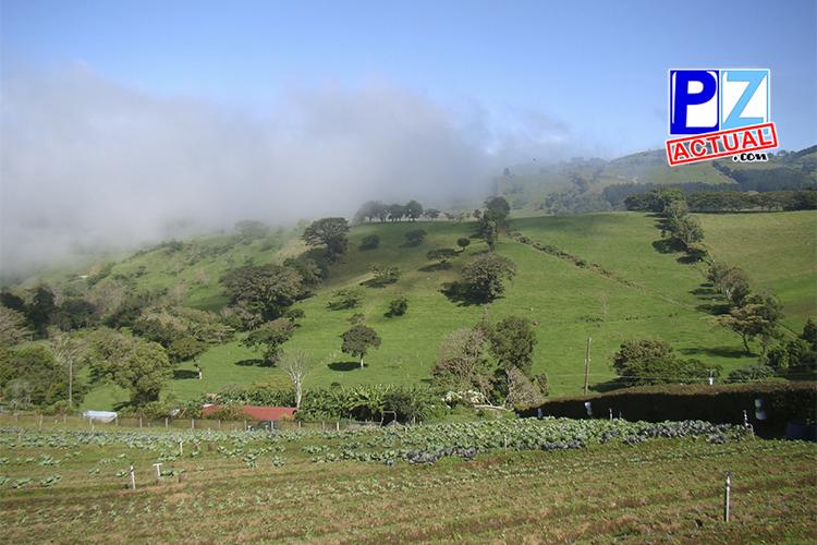 Modifican decreto para ampliar beneficio a agricultores que posean áreas de conservación y protección en sus fincas