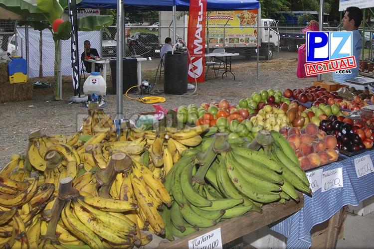 El TSE y el MAG aclaran puntos respecto a las Ferias del Agricultor durante las elecciones.