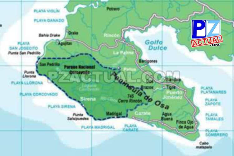 UCR forma nueva generación para proteger biodiversidad de la Península de Osa.
