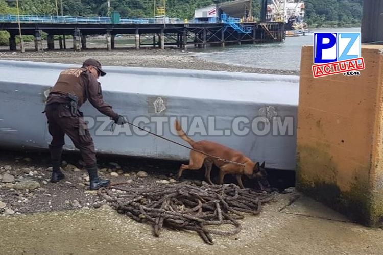 Autoridades interceptan lancha con cargamento de droga en aguas del Pacífico Sur.