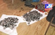 En menos de una semana Fuerza Pública del Pacífico Central ha decomisado 834 huevos de tortuga.