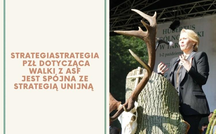 Współpraca z europoseł Andżeliką Możdżanowską w ramach walki z ASF
