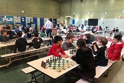 Q300ChessTournament2020
