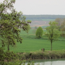 Looking out from the Etienne winery across the Marne in Cumieres