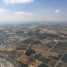 Citrus groves outside of Tel Aviv