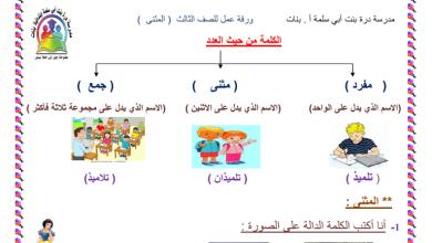 Photo of ورقة عمل لغة عربية المفرد المثنى والجمع الصف الثالث