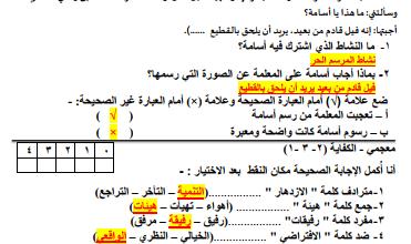 Photo of إختبار تجريبي أول لغة عربية للصف الرابع الفصل الثاني مدرسة النجاة النموذجية الإبتدائية