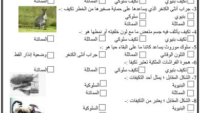 Photo of بنك أسئلة سلوك الكائنات الحية علوم كفايات للصف السادس أ. أحمد شحاته 2018-2019