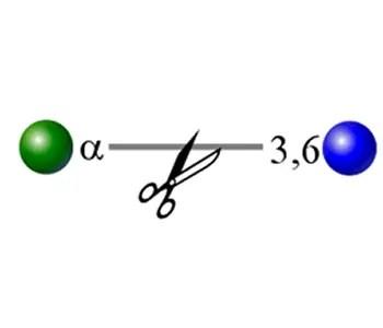 alpha galactosidase image