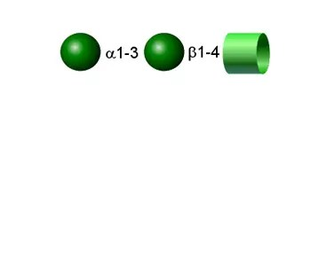 Alpha Gal 2-AA glycan