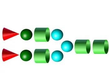 A2 Glycans