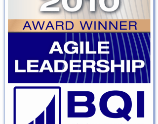 Agile Leadership Award 2010 Winner