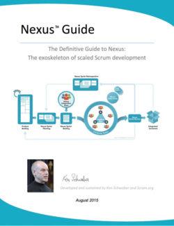 Nexus Guide v1.1