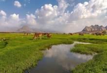 البرداني صور مذهلة لأجمل وديان السعودية