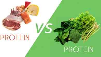 البروتين الحيواني ضد النباتي.. من يفوز؟