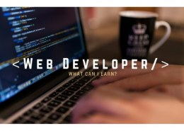 How much do web developers earn? What is their salary?
