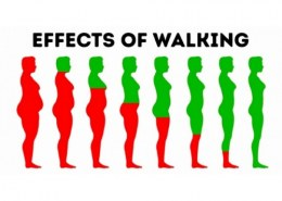 What happens when you walk everyday?