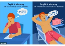 How can we get our working memory to work for us?