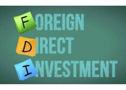 What is FDI and its types?