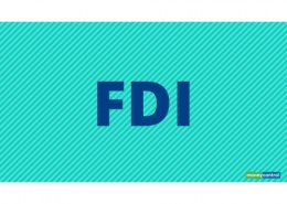 What do you mean by FDI strategy?