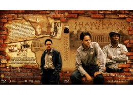 In the 1994 movie The Shawshank Redemption one of the lead male roles was played by?