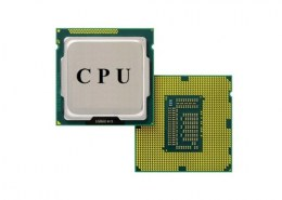 Which are components of Central Processing Unit (CPU)?