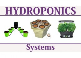 What are the 6 types of hydroponics?